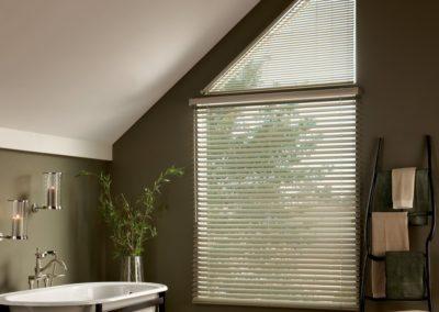 aluminum blinds in bathroom