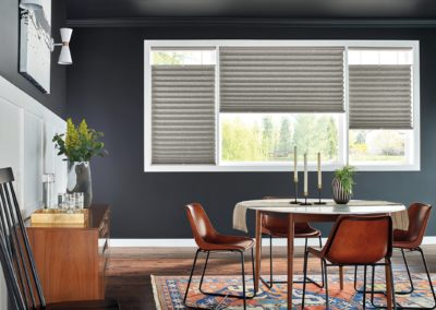 dining room with cellular and pleated shades