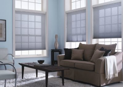 Living room with colored cellular and pleated shades